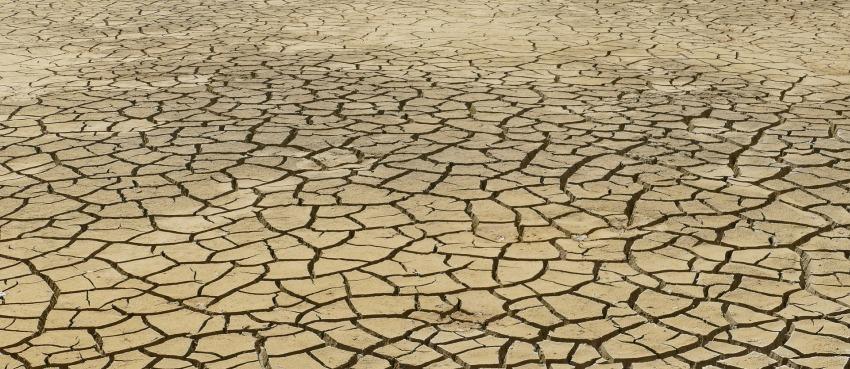 Dehydrated terrain